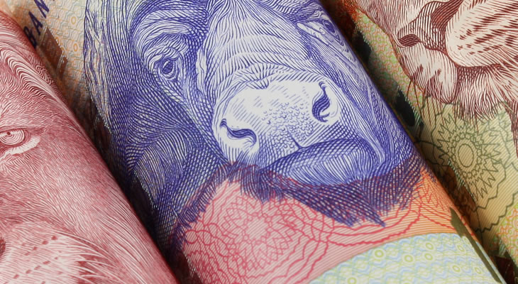 South African Rand Currency Forecast